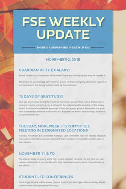 FSE Weekly Update