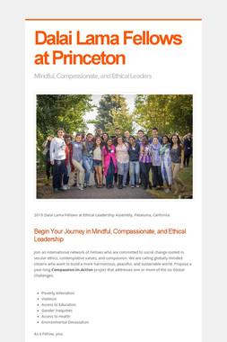 Dalai Lama Fellows at Princeton