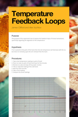 Temperature Feedback Loops