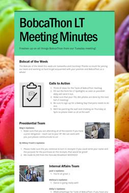 BobcaThon LT Meeting Minutes