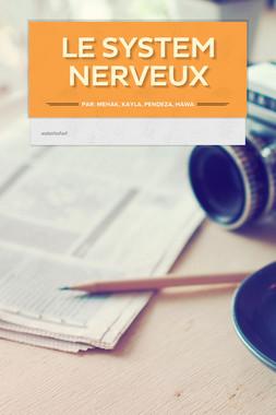 Le system nerveux