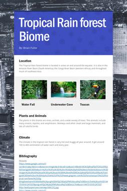 Tropical Rain forest Biome