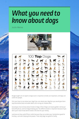 What you need to know about dogs