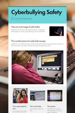 Cyberbullying Safety