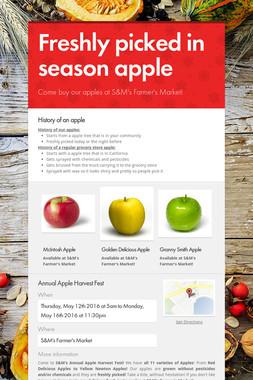 Freshly picked in season apple