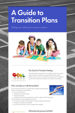 A Guide to Transition Plans