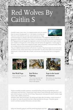 Red Wolves By Caitlin S