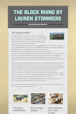 The Black Rhino By Lauren Stammers