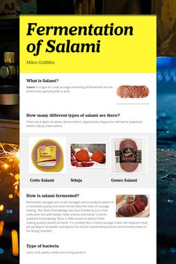 Fermentation of Salami