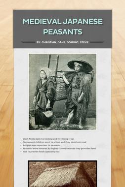 Medieval Japanese Peasants