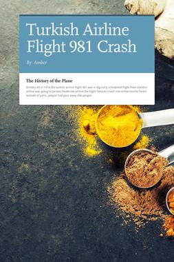 Turkish Airline Flight 981 Crash