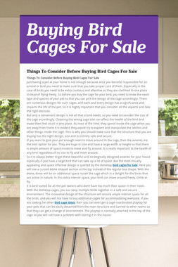 Buying Bird Cages For Sale