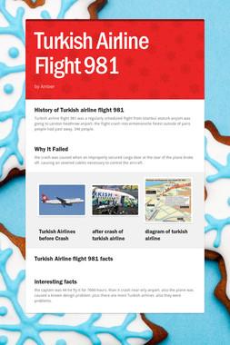 Turkish Airline Flight 981