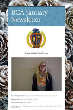 BCA January Newsletter