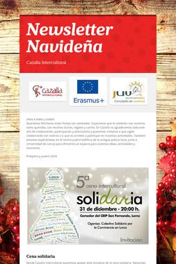 Newsletter Navideña