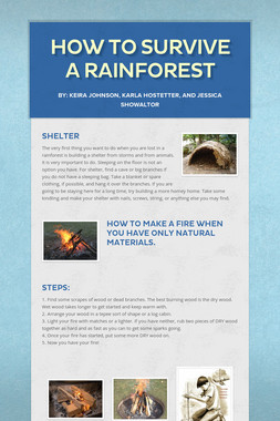 How To Survive A Rainforest