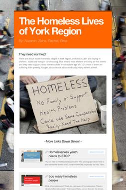 The Homeless Lives of York Region