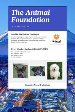 The Animal Foundation