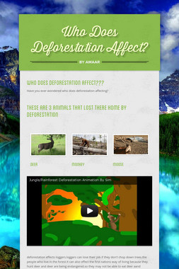 Who Does Deforestation Affect?