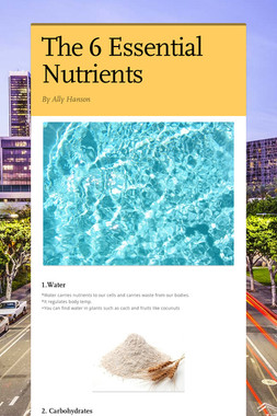 The 6 Essential Nutrients