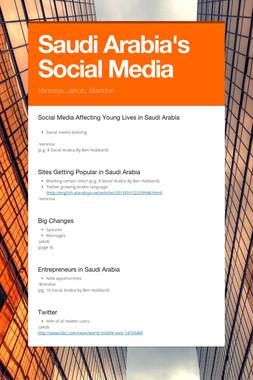 Saudi Arabia's Social Media