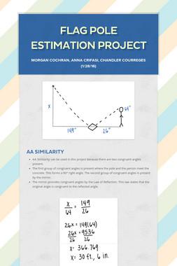 Flag Pole Estimation Project