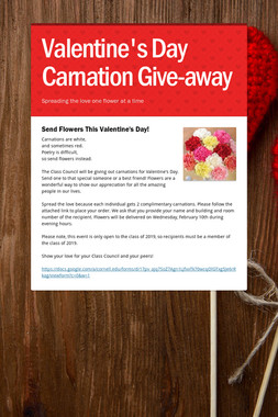 Valentine's Day Carnation Give-away