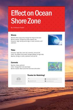 Effect on Ocean Shore Zone