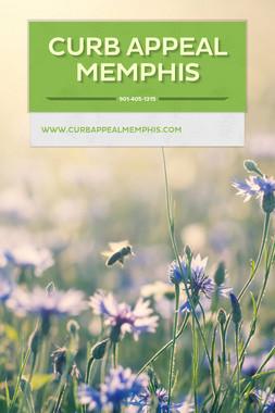 Curb Appeal Memphis