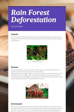 Rain Forest Deforestation