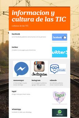 informacion y cultura de las TIC