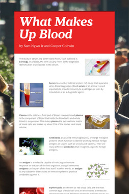 What Makes Up Blood