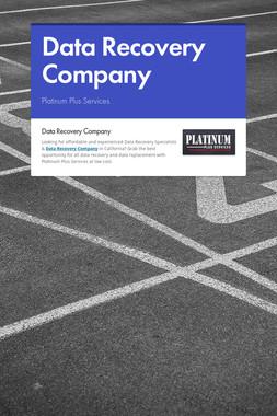 Data Recovery Company