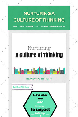 Nurturing a Culture of Thinking