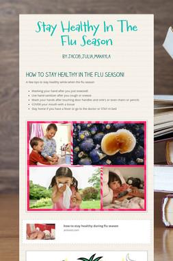 Stay Healthy In The Flu Season