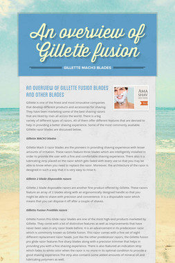 An overview of Gillette fusion