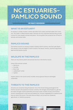 NC Estuaries- Pamlico Sound