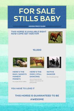 for sale  stills baby