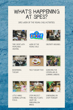 WHAT'S HAPPENING AT SPES?