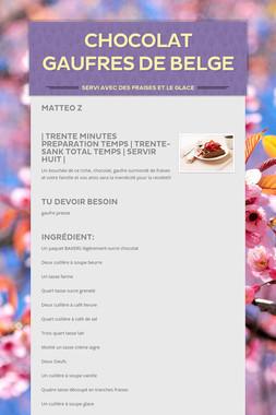 Chocolat Gaufres de Belge