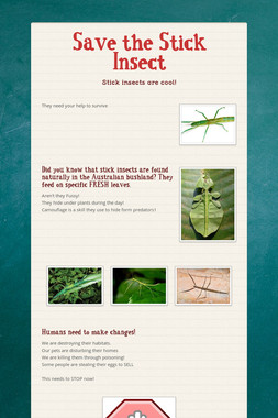 Save the Stick Insect