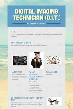 Digital Imaging Technician (D.I.T.)