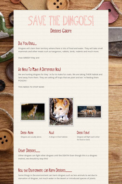 SAVE THE DINGOES!