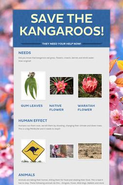 Save the kangaroos!