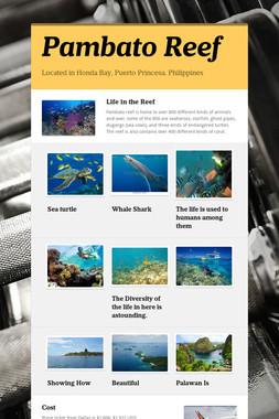 Pambato Reef
