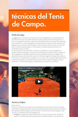 técnicas del Tenis de Campo.