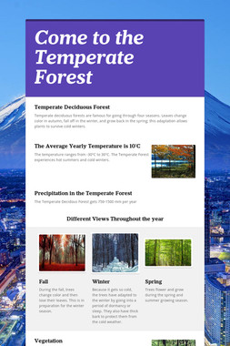 Come to the Temperate Forest