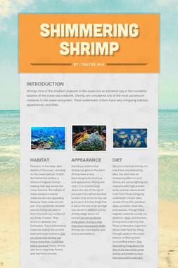 Shimmering Shrimp