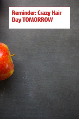 Reminder: Crazy Hair Day TOMORROW
