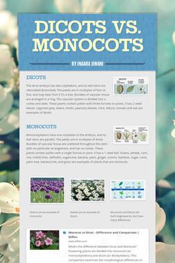 Dicots vs. Monocots